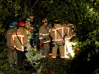 Car Into Woods With Entrapment